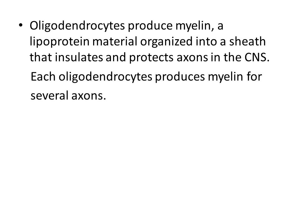 Oligodendrocytes produce myelin, a lipoprotein material organized into a sheath that insulates and protects axons in the CNS.