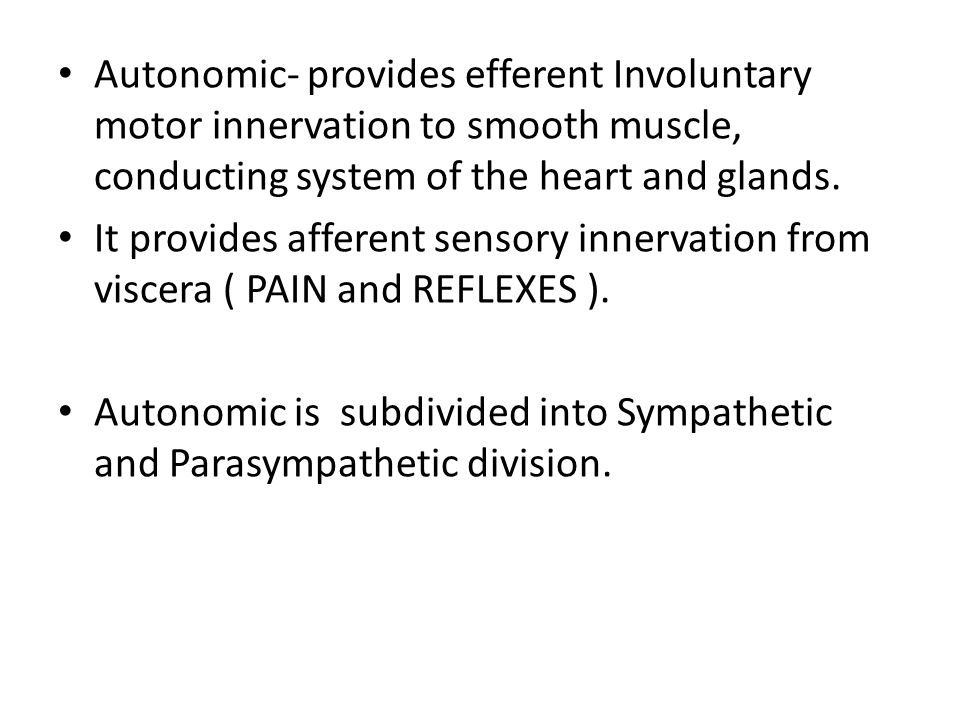 Autonomic- provides efferent Involuntary motor innervation to smooth muscle, conducting system of the heart and glands.