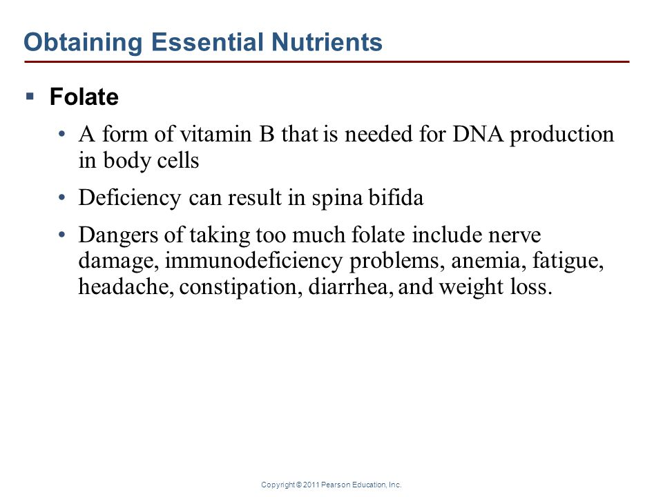 Obtaining Essential Nutrients