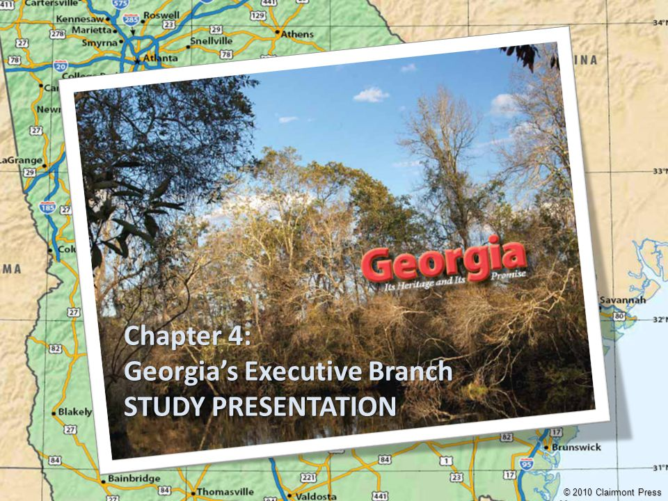 Georgia's Executive Branch STUDY PRESENTATION