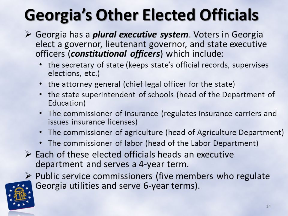 Georgia's Other Elected Officials