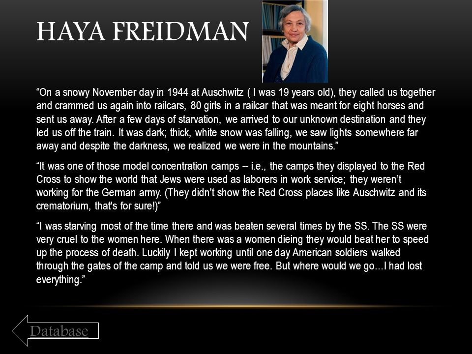 Haya Freidman Database