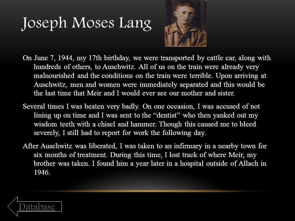Joseph Moses Lang Database