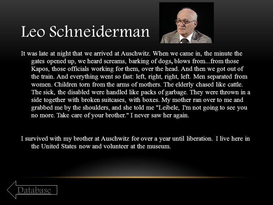 Leo Schneiderman Database
