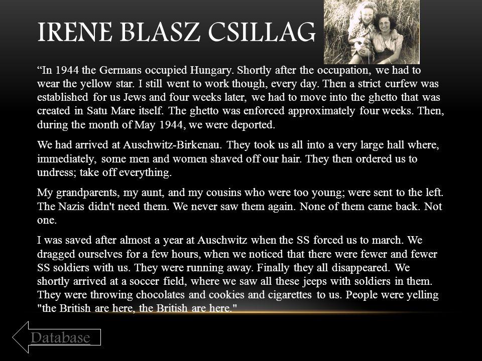 Irene Blasz Csillag Database