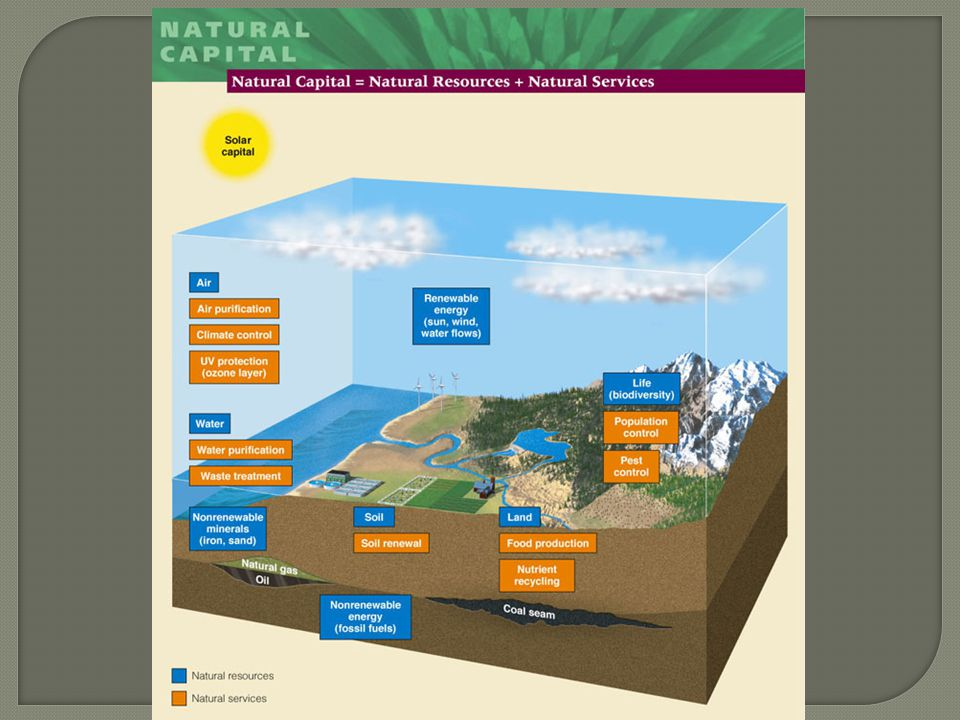 Natural resources – materials and energy in nature that are essential or useful to humans.
