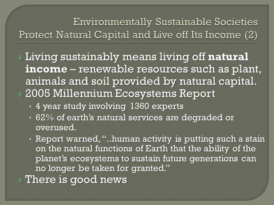 2005 Millennium Ecosystems Report