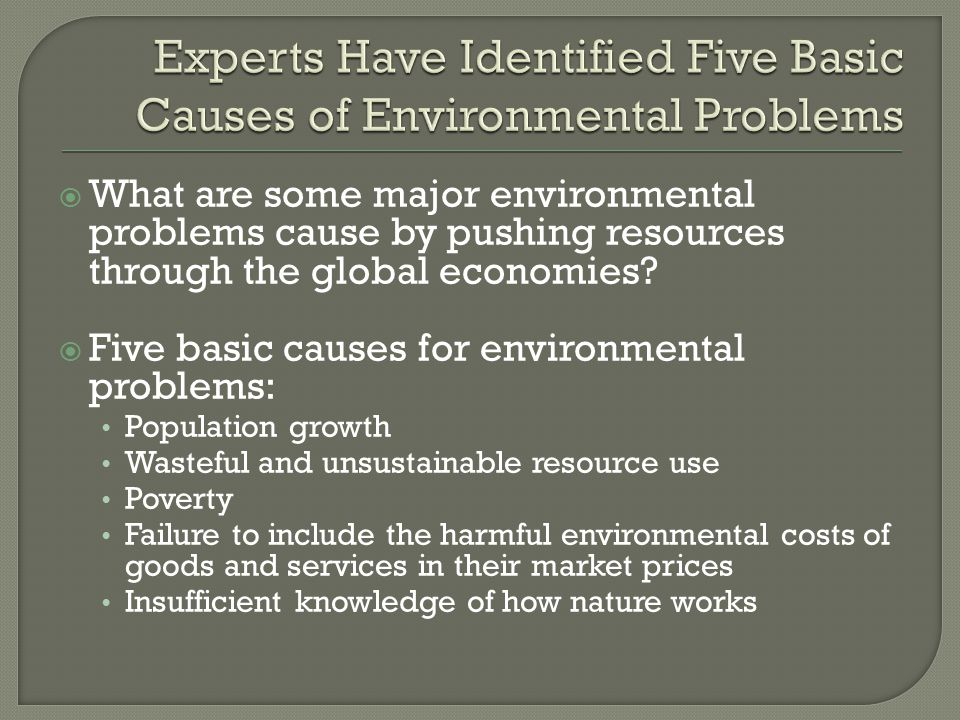 Experts Have Identified Five Basic Causes of Environmental Problems