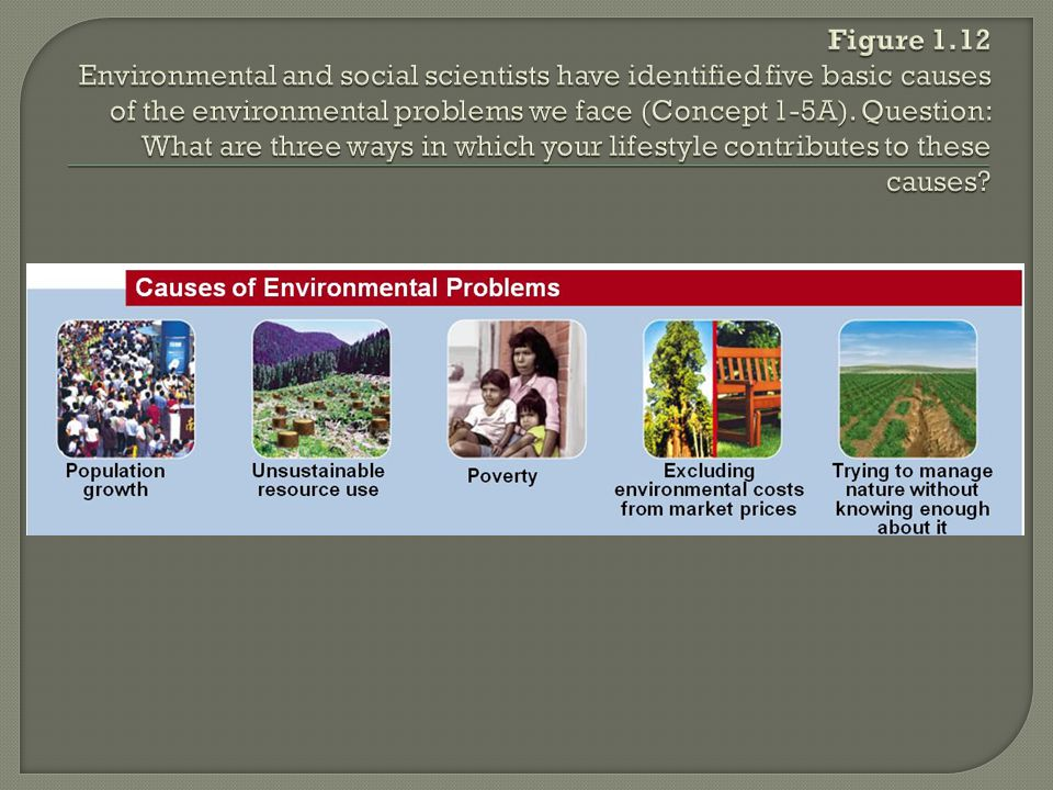 Figure 1.12 Environmental and social scientists have identified five basic causes of the environmental problems we face (Concept 1-5A).