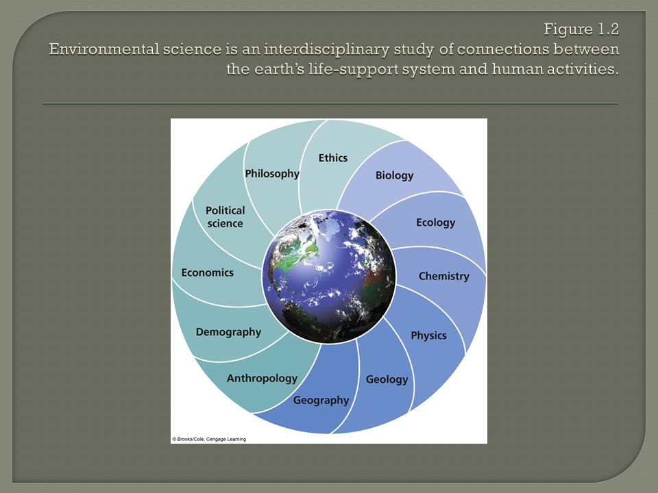 Figure 1.2 Environmental science is an interdisciplinary study of connections between the earth's life-support system and human activities.
