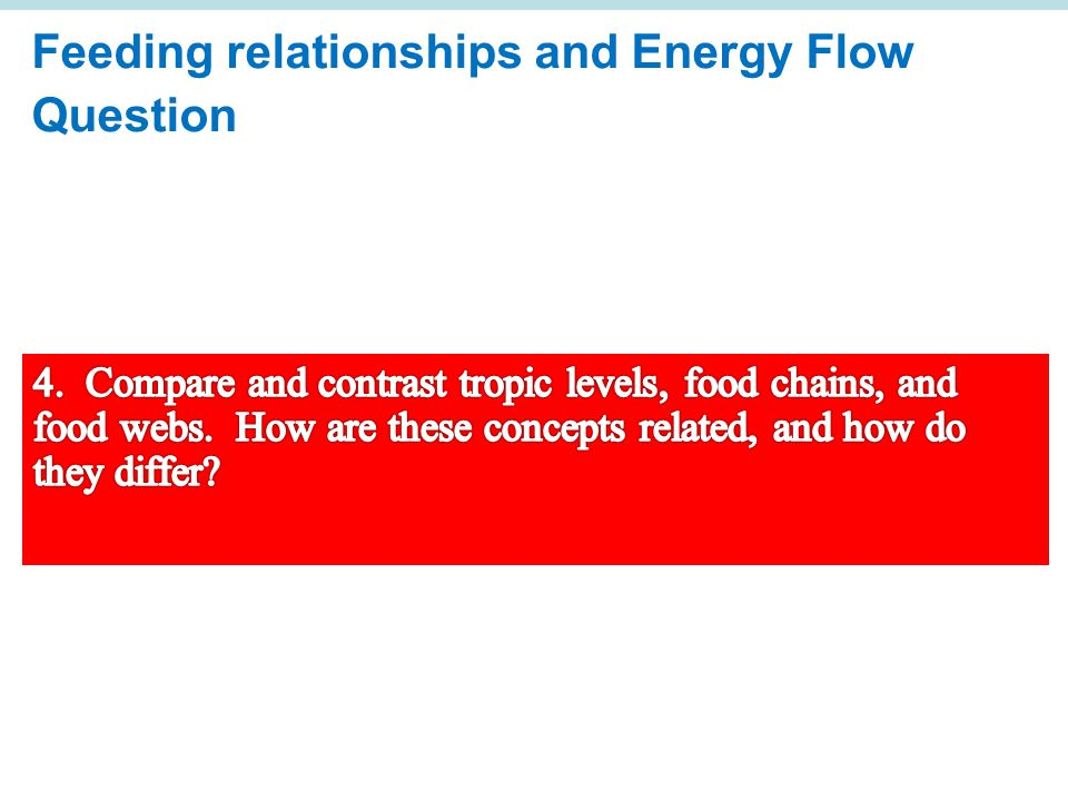 Feeding relationships and Energy Flow Question