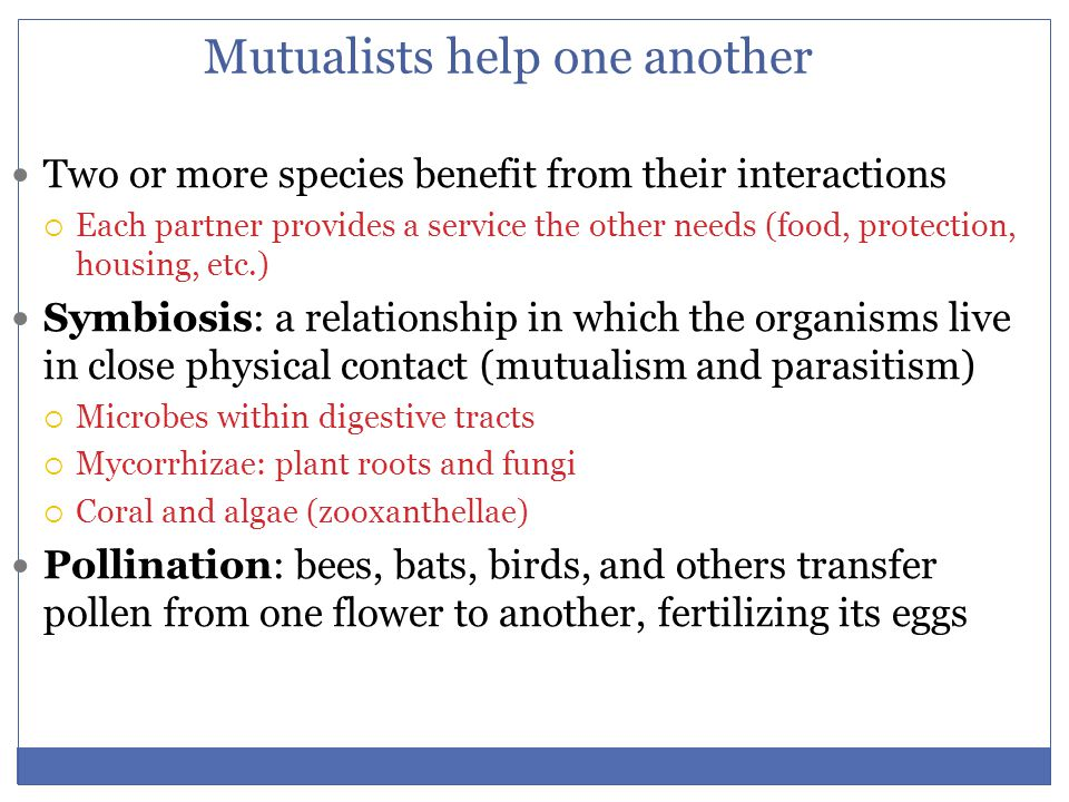 Mutualists help one another