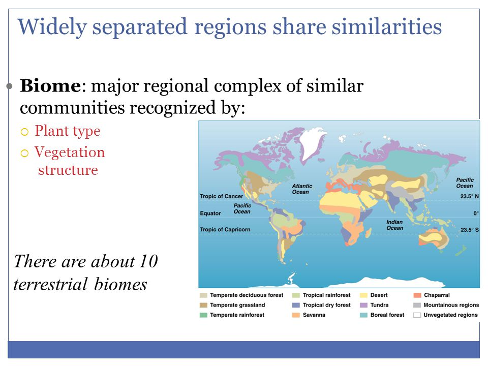 Widely separated regions share similarities
