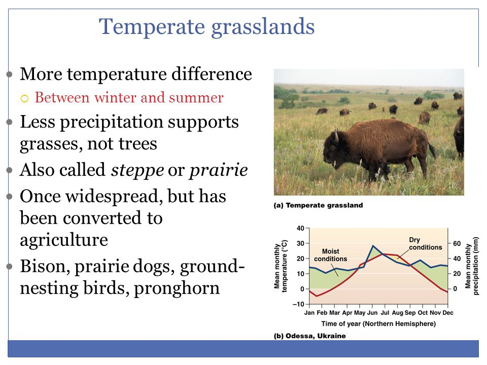 Temperate grasslands More temperature difference