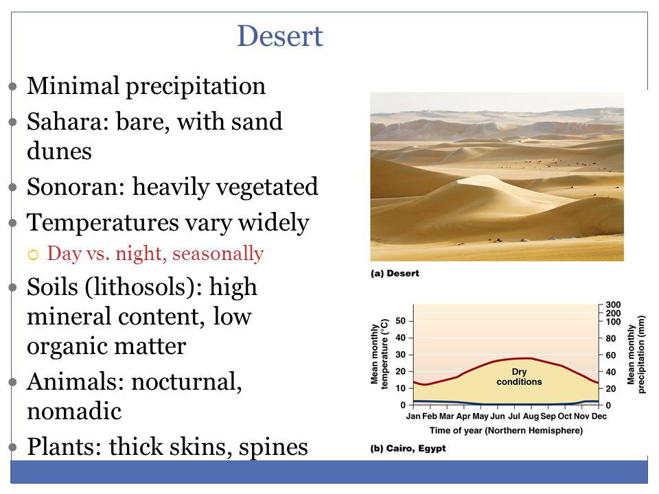 Desert Minimal precipitation Sahara: bare, with sand dunes