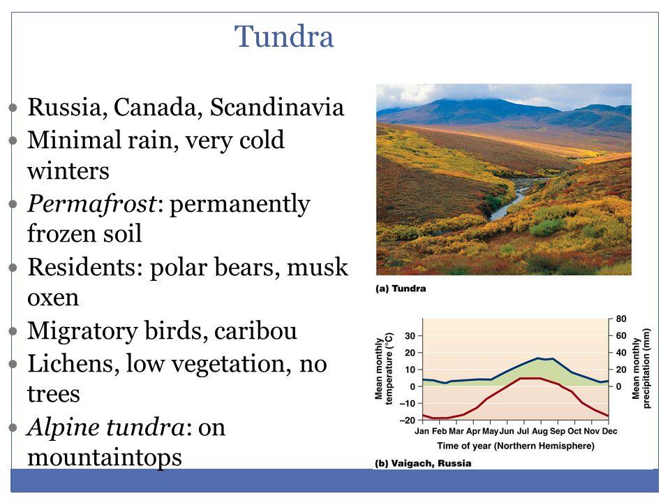 Tundra Russia, Canada, Scandinavia Minimal rain, very cold winters