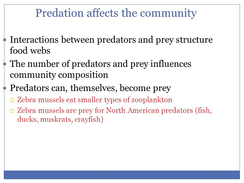 Predation affects the community
