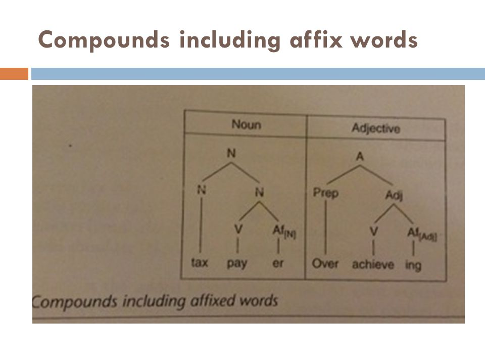 Compounds including affix words
