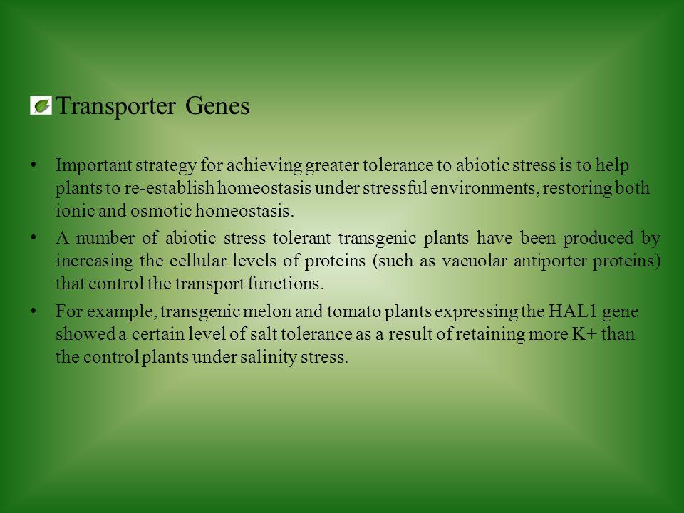 Transporter Genes