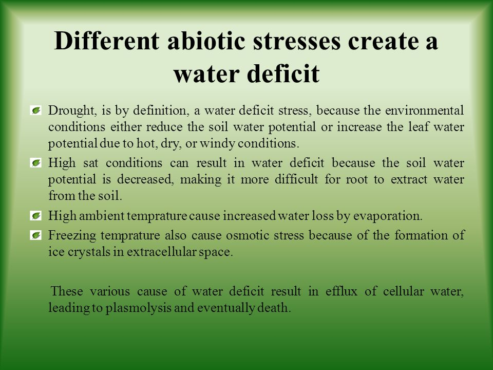 Different abiotic stresses create a water deficit