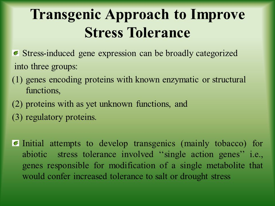 Transgenic Approach to Improve Stress Tolerance
