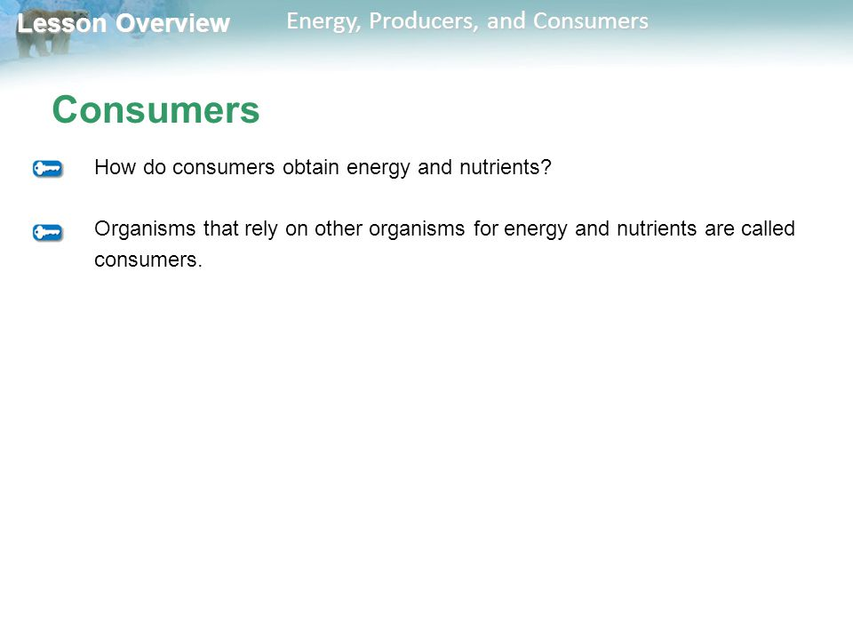 Consumers How do consumers obtain energy and nutrients