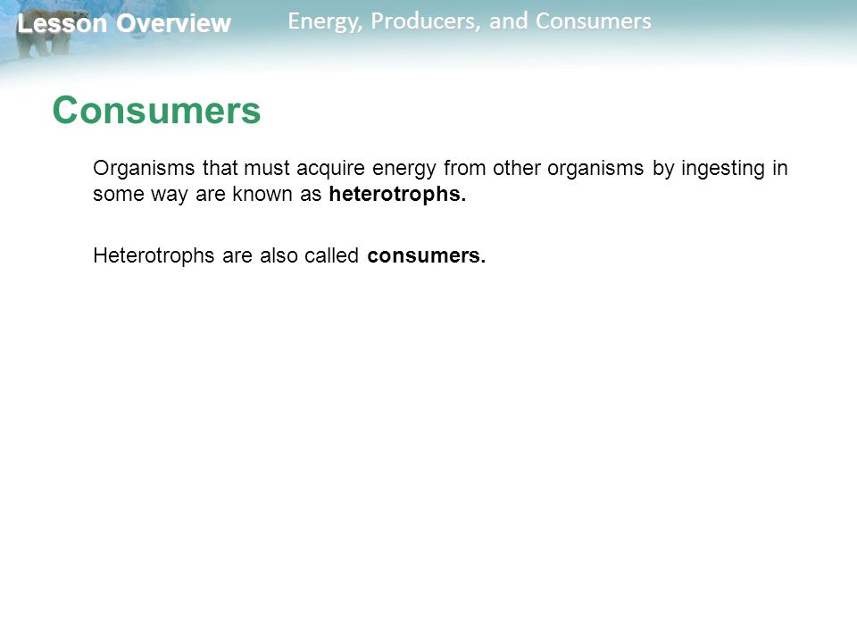 Consumers Organisms that must acquire energy from other organisms by ingesting in some way are known as heterotrophs.