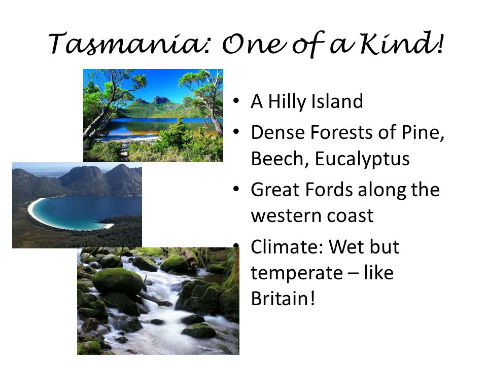 Tasmania: One of a Kind! A Hilly Island