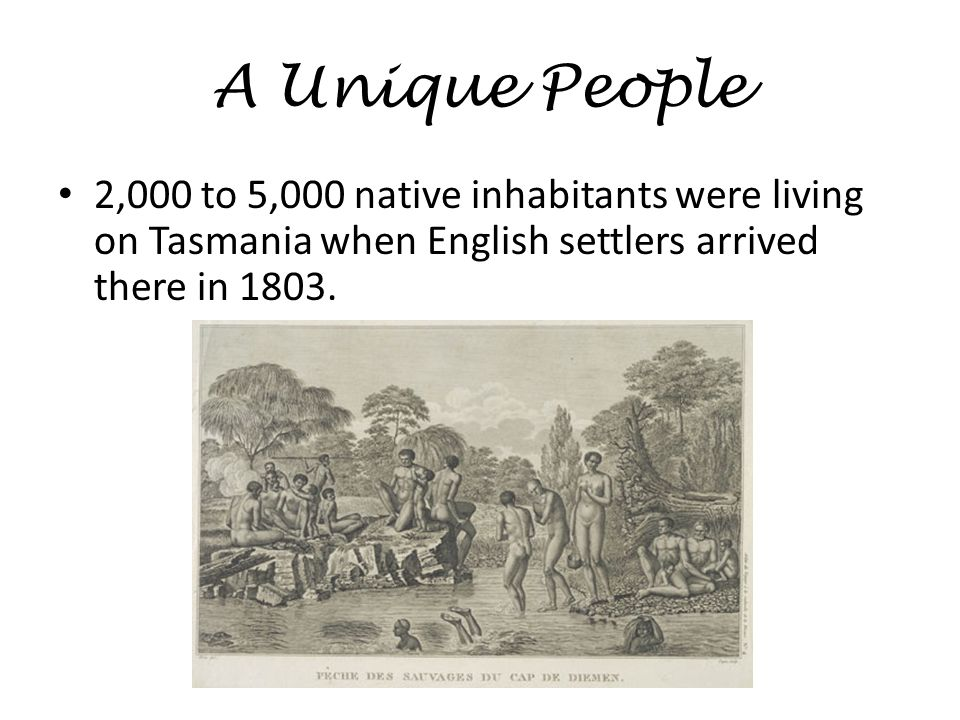 A Unique People 2,000 to 5,000 native inhabitants were living on Tasmania when English settlers arrived there in 1803.