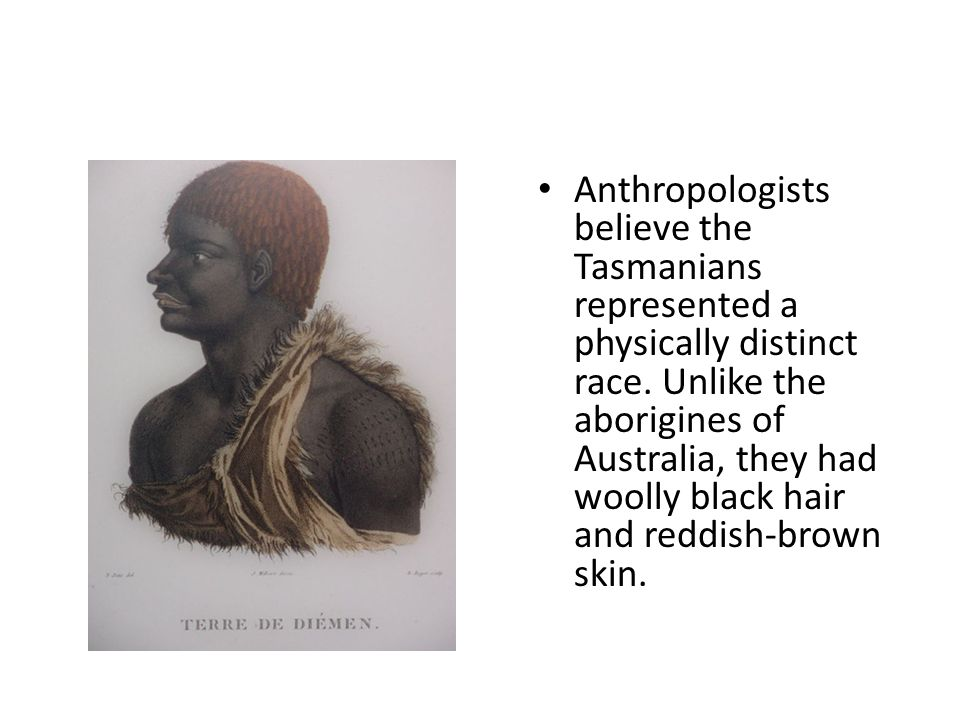 Anthropologists believe the Tasmanians represented a physically distinct race.
