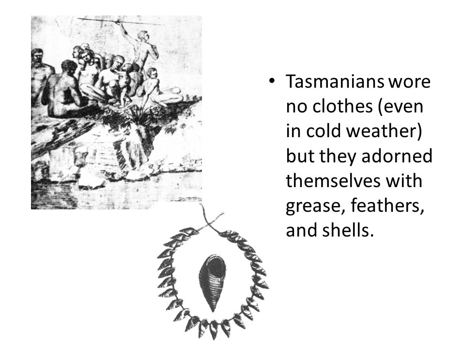 Tasmanians wore no clothes (even in cold weather) but they adorned themselves with grease, feathers, and shells.