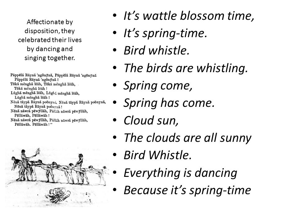 It's wattle blossom time, It's spring-time. Bird whistle.