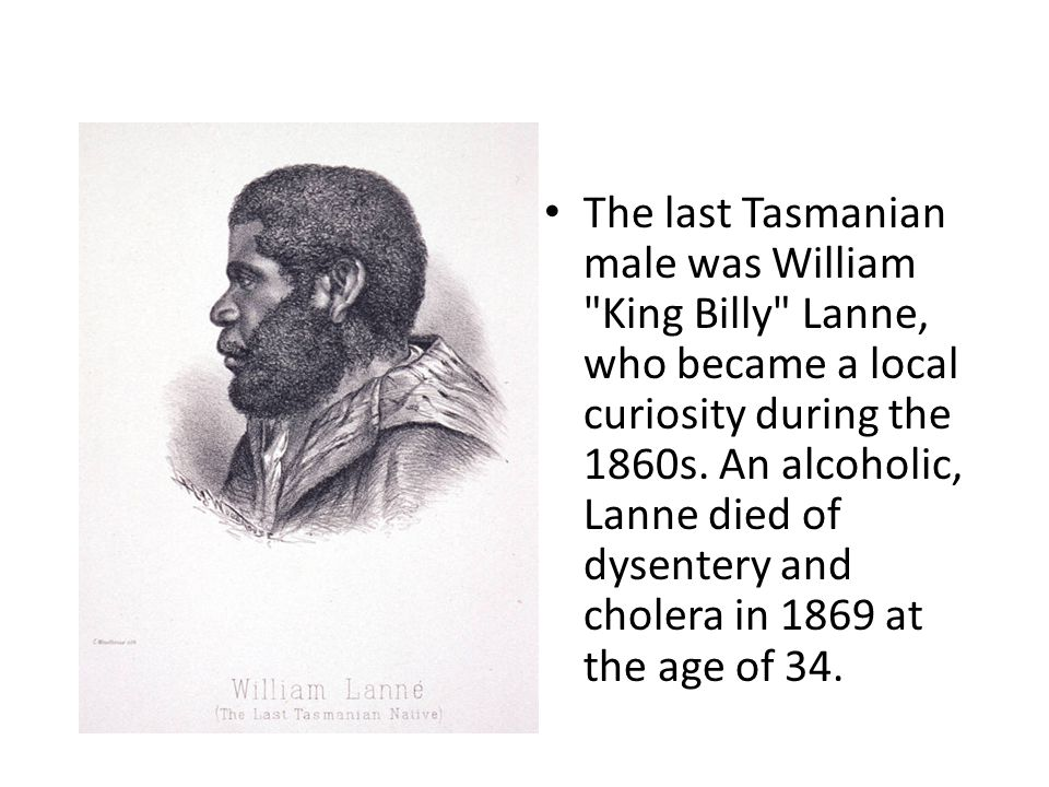 The last Tasmanian male was William King Billy Lanne, who became a local curiosity during the 1860s.