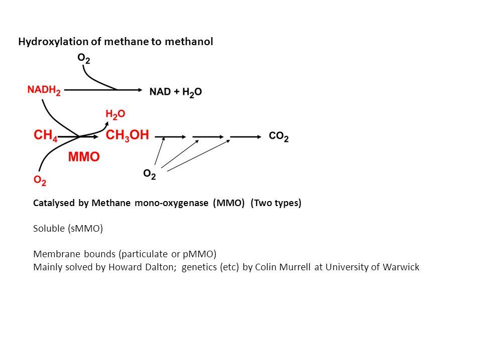 Hydroxylation of methane to methanol