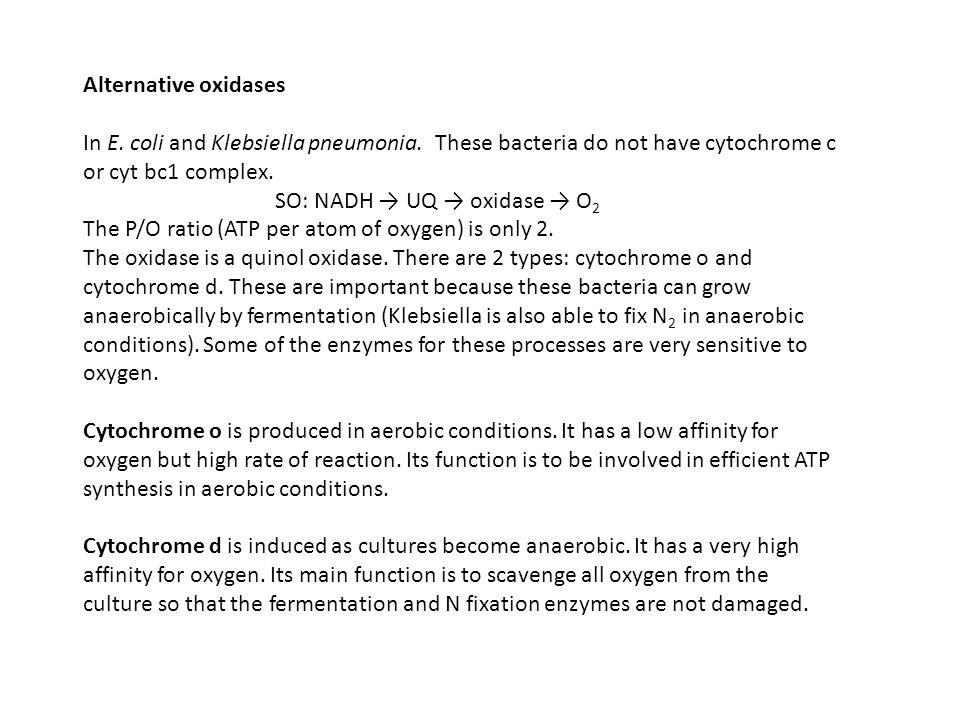 Alternative oxidases In E. coli and Klebsiella pneumonia. These bacteria do not have cytochrome c or cyt bc1 complex.