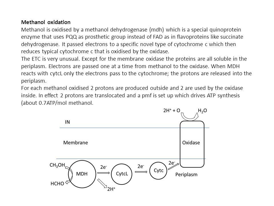 Methanol oxidation