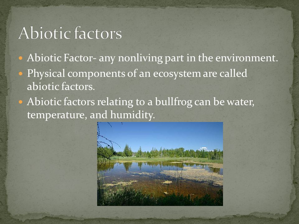 Abiotic factors Abiotic Factor- any nonliving part in the environment.