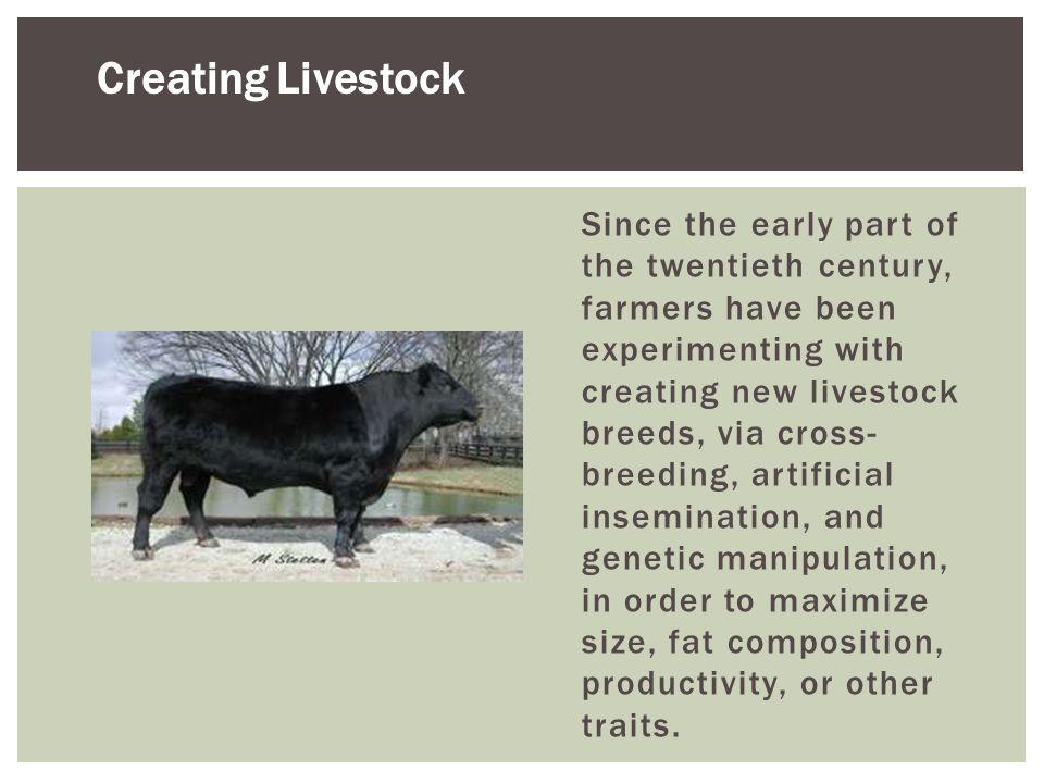 Creating Livestock