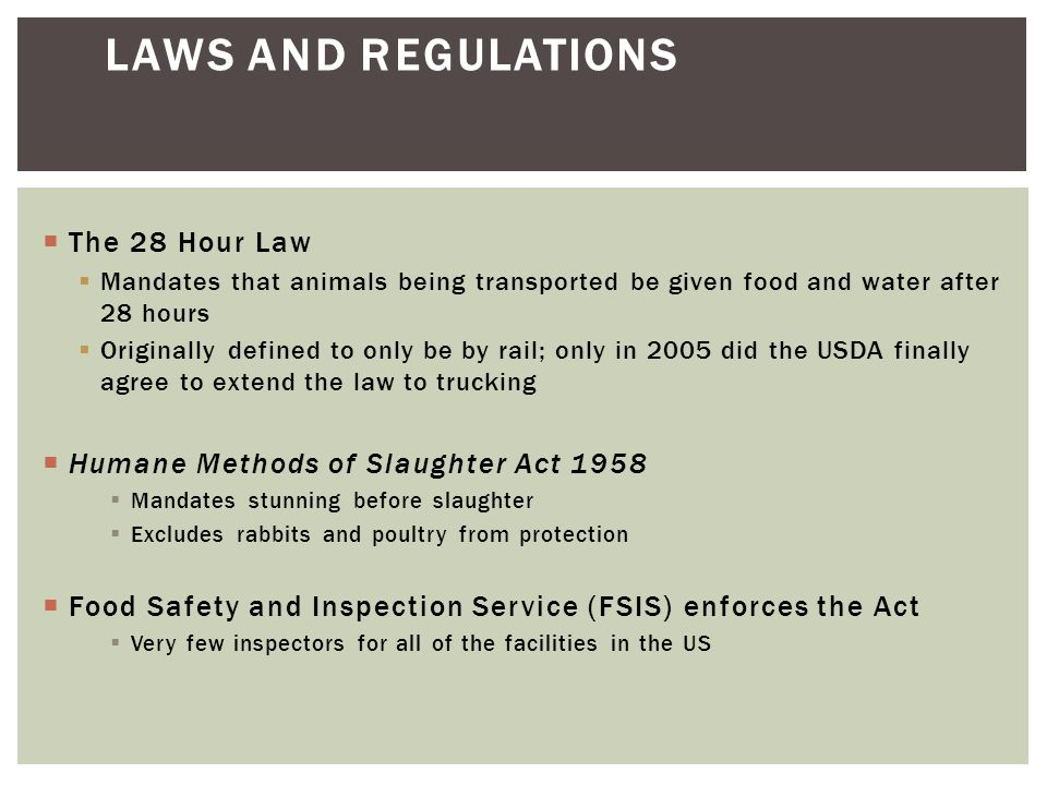 Laws and Regulations The 28 Hour Law
