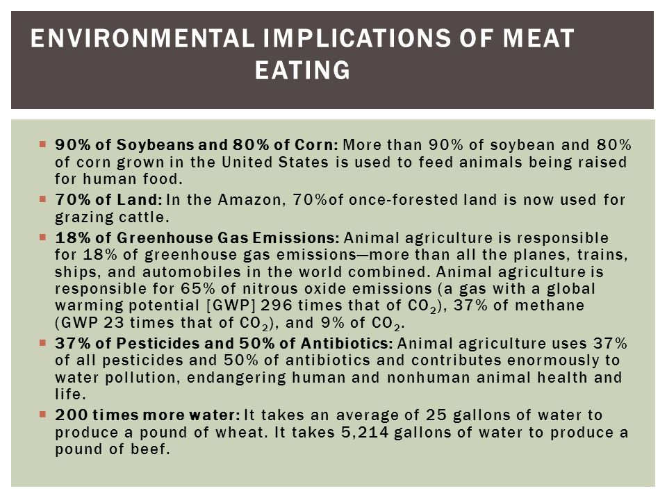 Environmental Implications of Meat Eating