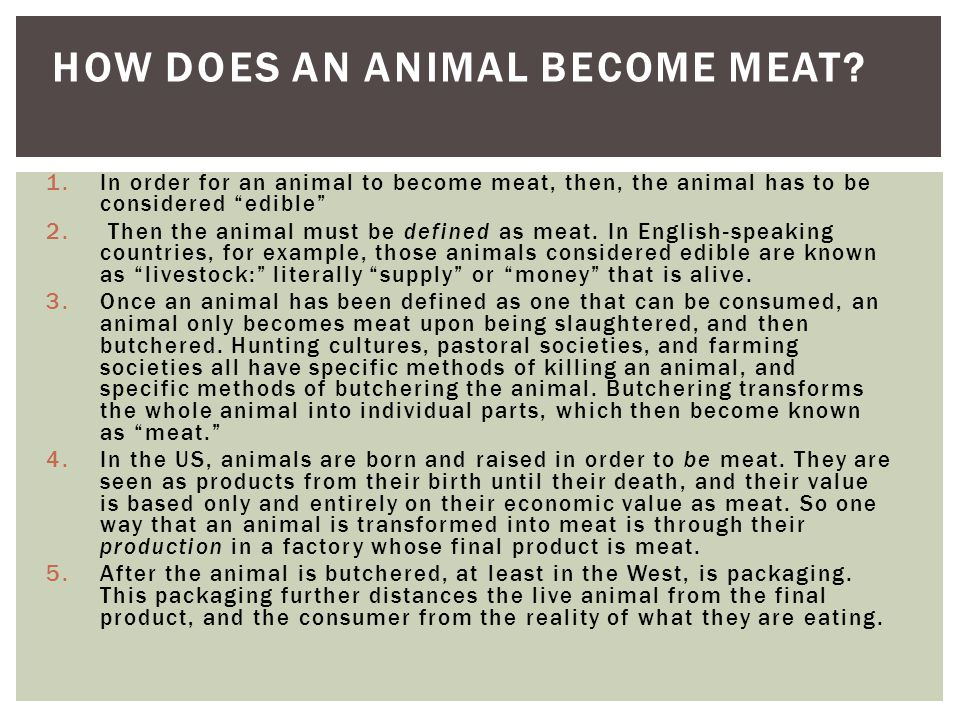 How does an animal become meat