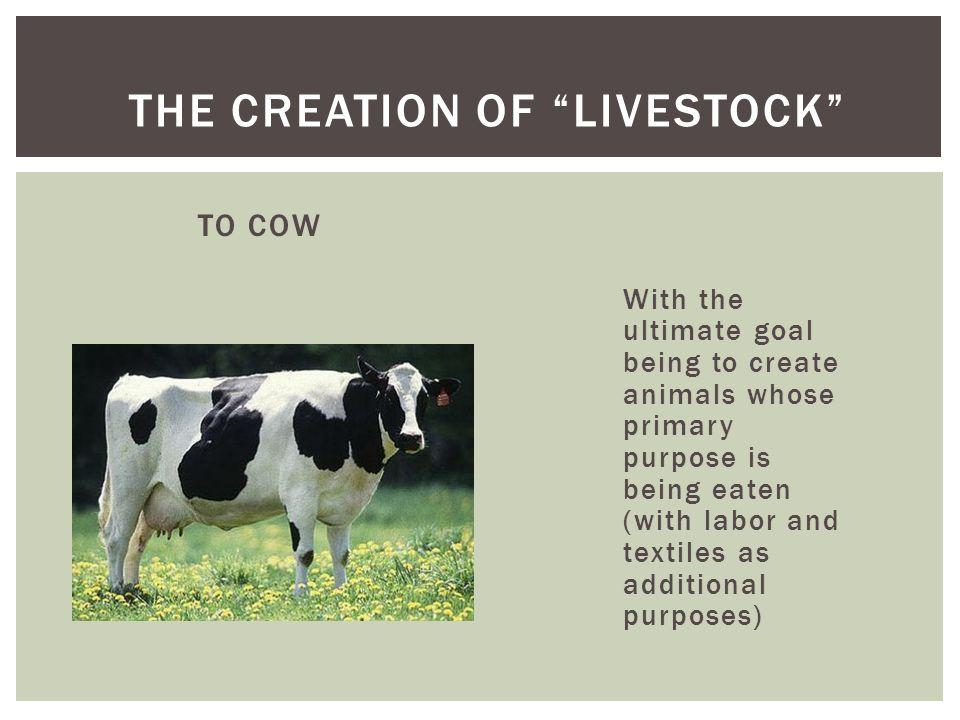 The Creation of Livestock