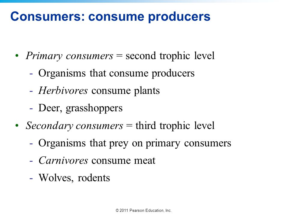 Consumers: consume producers