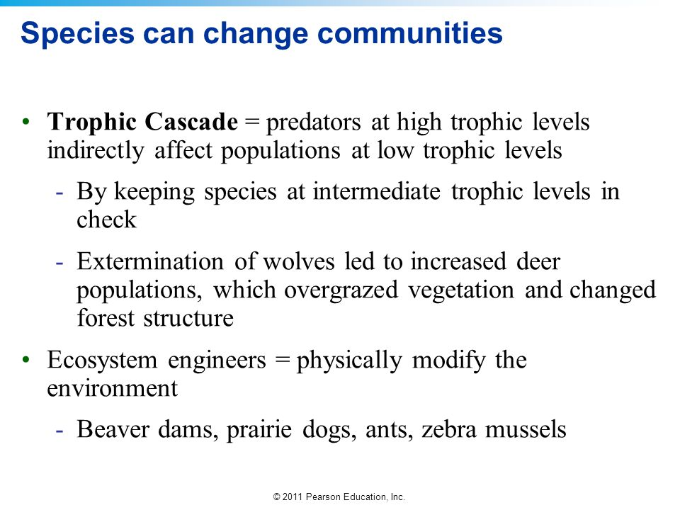 Species can change communities