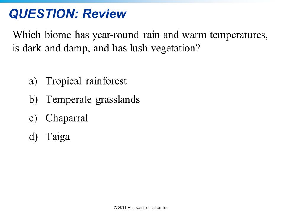 QUESTION: Review Which biome has year-round rain and warm temperatures, is dark and damp, and has lush vegetation