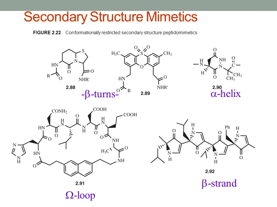 Secondary Structure Mimetics