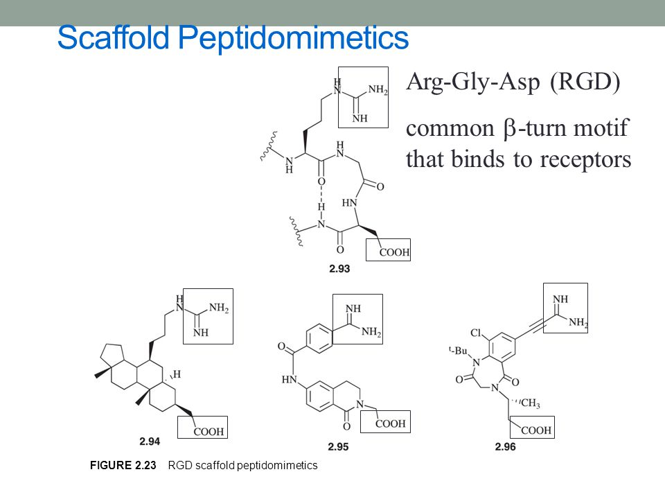 Scaffold Peptidomimetics