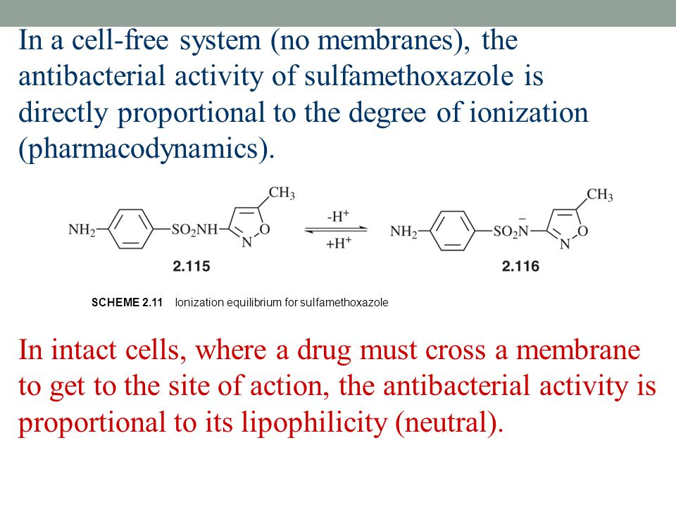 In a cell-free system (no membranes), the antibacterial activity of sulfamethoxazole is directly proportional to the degree of ionization (pharmacodynamics).