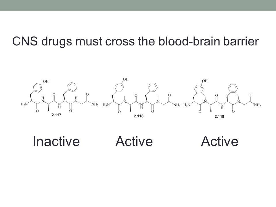 CNS drugs must cross the blood-brain barrier
