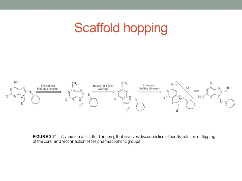 Scaffold hopping